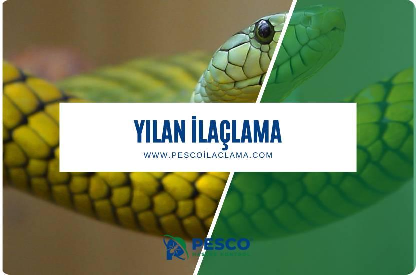 Pesco İlaçlama'nın yılan ilaçlama hizmetine ilişkin bilgilendirme yazısıdır.